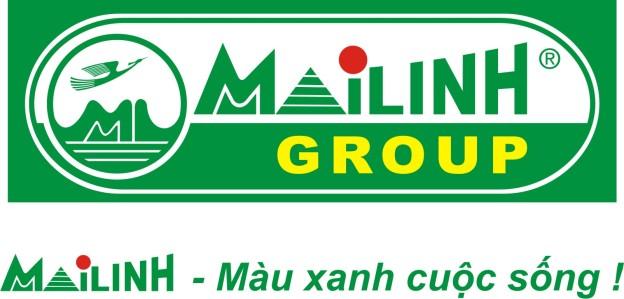 ho-so-mai-linh-group-ong-vua-om-yeu-cua-thi-truong-taxi